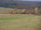 Bilder der Panoramaläufe