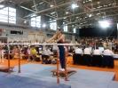 Deut. Senioren-Meisterschaften 2009 im Gerätturnen