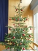 TSV Weihnachtsfeier 2015_2